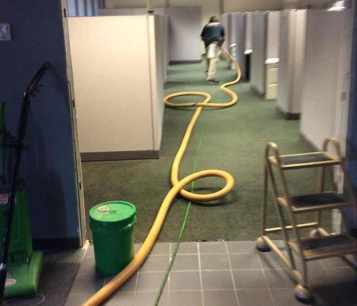 Commercial General Cleaning